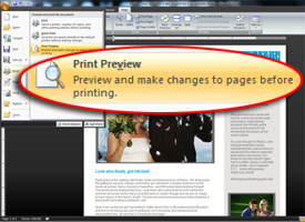 screenshot with Print Preview callout